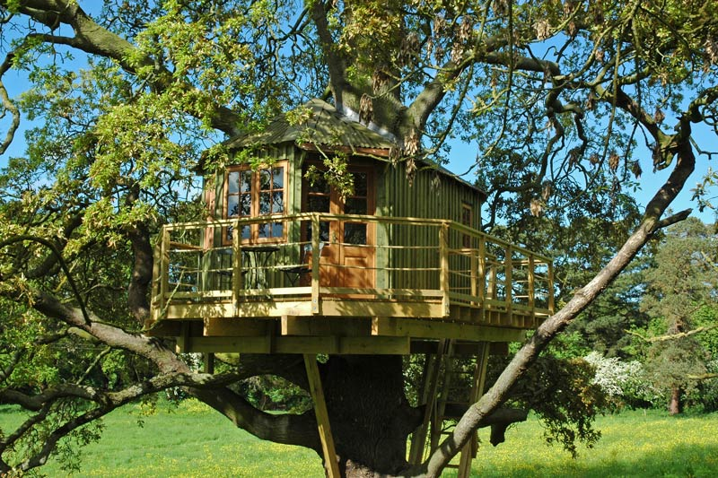 Bespoke off grid adult treehouse design in Ireland