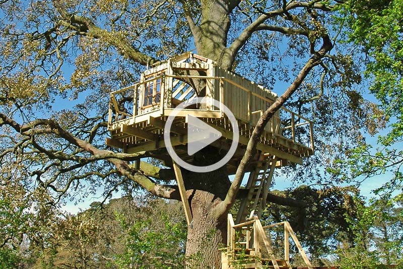 Bespoke adult treehouse hideaway designed and built in Ireland.